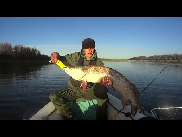 Трофейная рыбалка в Омской области