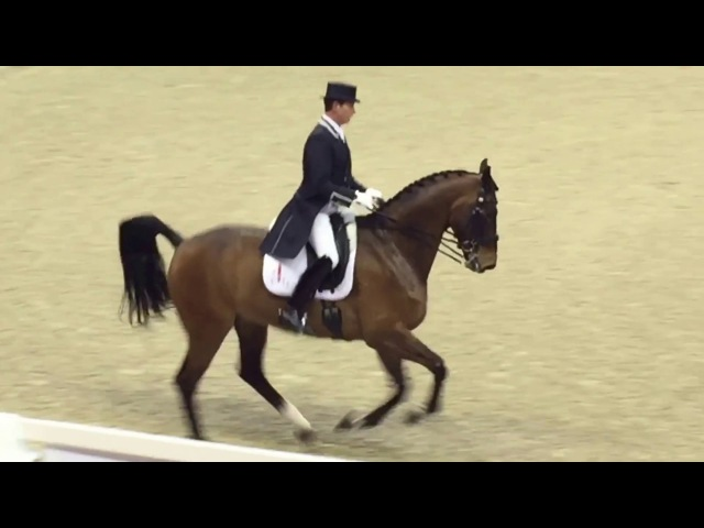 Carl Hester and Nip Tuck - 83.757%
