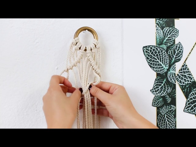 DIY Macrame Plant Hanger for Beginners Interior Ideas JO JUDY