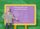 Школа Доктора Комаровского: 10 вопросов про антибиотики