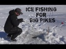 Vinterfiske: Ismete efter stor gädda