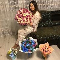 Алия Бабайцева