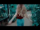 Run into the wild