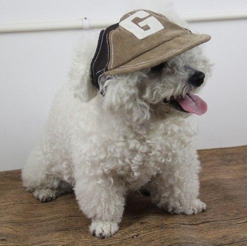 Кепка для собак за 262 - 279