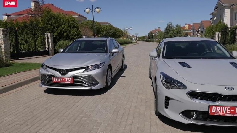 Toyota Camry или Kia Stinger — сравниваем свои машины