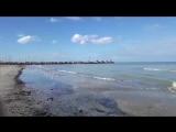 ადრიატიკის ზღვა სენიგალიის სანაპიროსთან