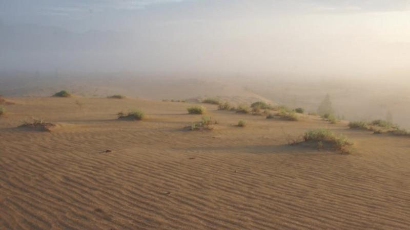 Чарские пески-Хребет Кодар-Байкал. 2017