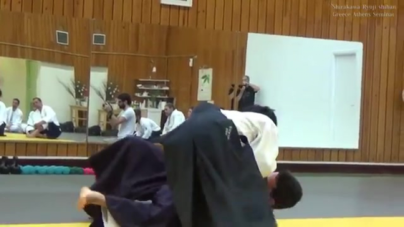 合気道 二教 Aikido technique - Kata Dori Nikkyo.mp4