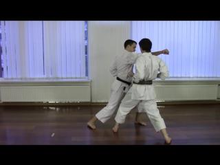 Heian Shodan - Shotokan Kata Bunkai