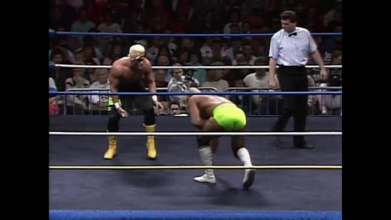 12.13.1989 - Sting VS Lex Luger