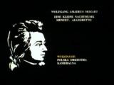 Мульт с музыкой Моцарта Маленькая ночная серенада. МЕНУЭТ