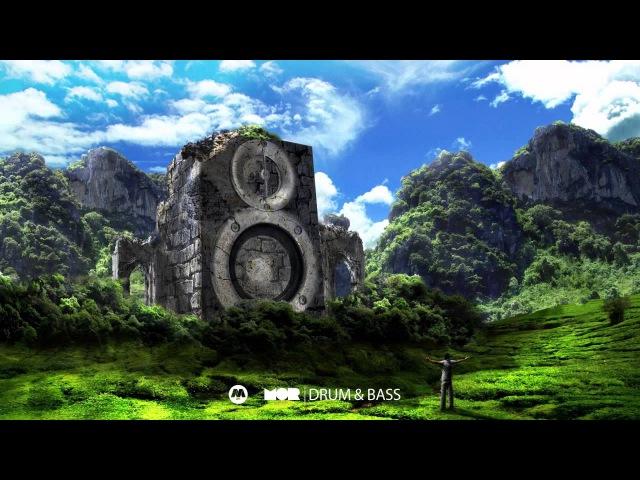 Israel Vibration - Rude Boy Shufflin' (Green Visionz Remix)