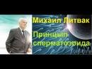 Принцип сперматозоида ч 1 Аудио книга Михаила Ефимовича Литвака