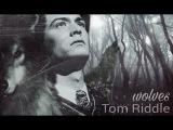 Tom Riddle wolves