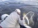 Рыбалка на сома - 30