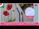 Corso di Acquerello BASE: Come dipingere i PAPAVERI con una CANNUCCIA - LEZIONE 17