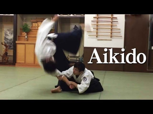 合気道 柔らかで美しい自由技03 Beautiful Aikido - Jiyu Waza