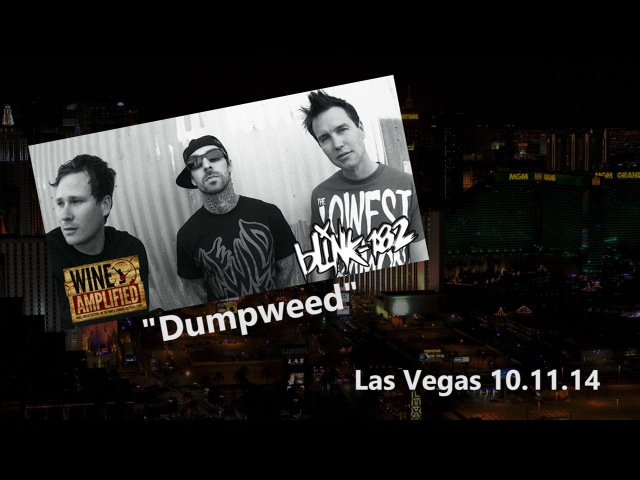 Blink 182 Dumpweed Wine Amplified Las Vegas 2014