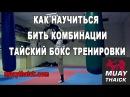 Как научиться бить комбинации и развить бойцовский IQ тайский бокс тренировки rfr yfexbnmcz bnm rjv byfwbb b hfpdbnm jqwjdcr
