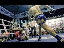 Сломал ЛОУ КИКОМ Боксёра профи! Бокс против Тайского бокса ckjvfk kje rbrjv ,jrc`hf ghjab! ,jrc ghjnbd nfqcrjuj ,jrcf