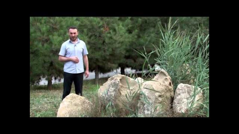 Ebedi Seadet Yolu Hezret Imam Rza (A) / Natiq Axund