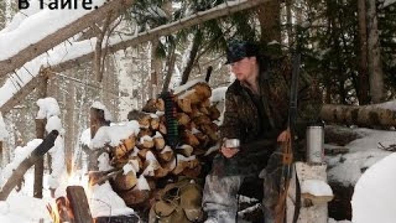 В Тайге Промысловая охота На путике