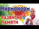 Лучший помощник в развитие памяти Мнемонорм Тибетская Формула Андрей Дуйко