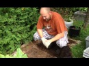 No dig garden How to compost your lawn