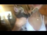 Naomi Woods играет с котом