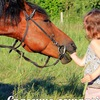 Спасение лошадей <<Последний шанс>>