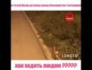 Жители улицы Весенняя просят АМС г Владикавказа обратить внимание на дорогу от Дзусова до Весенней