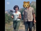 Не знающая русского языка, итальянская группа Vanilla Sky поет Pesenka O Medvedyakh (Песенка о Медведях)