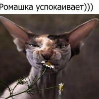 Ирина Горох