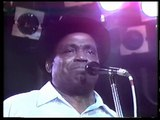 Willie Dixon - I Don't Trust Nobody