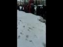 Илья Белый Live