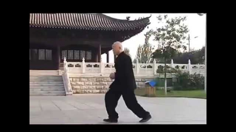 戴氏心意拳合集 Dai Xin Yi Collection Chen Jin fu Wang Yin hai dizi