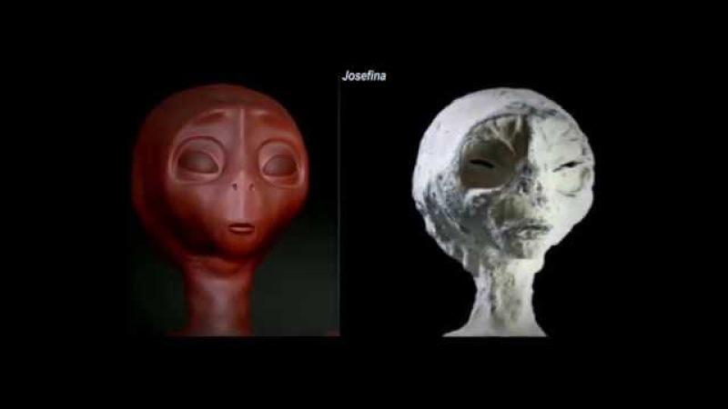 Les Êtres mystérieux de Nasca - LES TROIS ESPÈCES