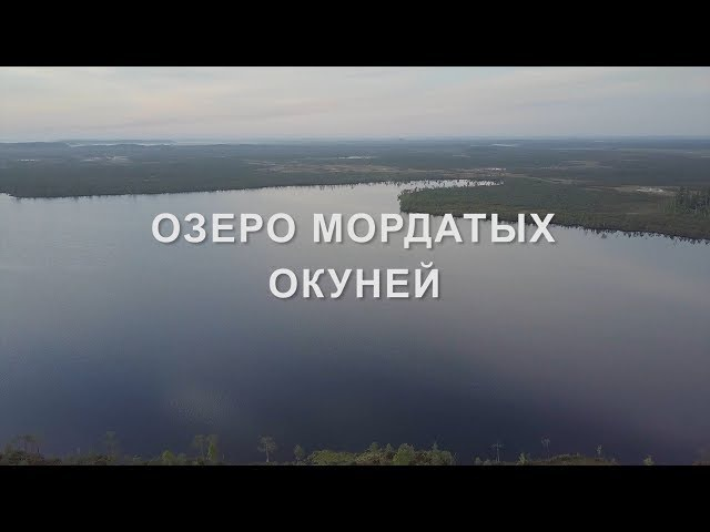 ОЗЕРО МОРДАТЫХ ОКУНЕЙ