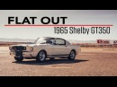 Flat Out | 1965 Shelby GT350
