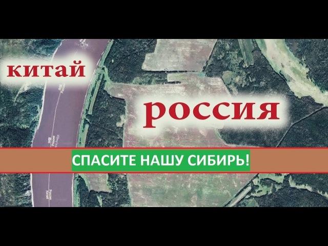 Сибирь станет пустыней Если мы не остановим Китайцев