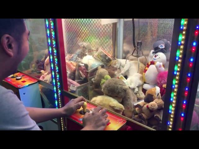 Кот застрял в автомате с игрушками || Viralhog