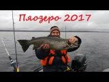 Пяозеро 2017. Кумское водохранилище. Карелия