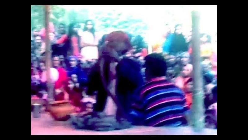 Snake dance fair in the village/Jhapan Khela/jhenidah pat 8