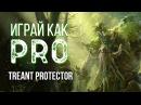 Играй как PRO Treant Protector