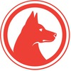 Интернет маркетинг Красная Собака