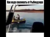 как нужно сваливать от рыбнадзора