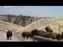 USA - Индейцы племени Лакота, Резервация Пайн Ридж - Native Americans Lakota Sioux Pine Ridge
