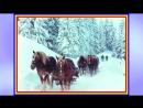 Stefania Rares - Mandra-i iarna-n Bucovina
