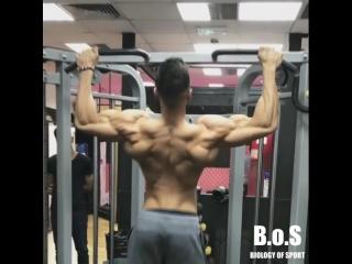 Прорабатываем мышцы спины