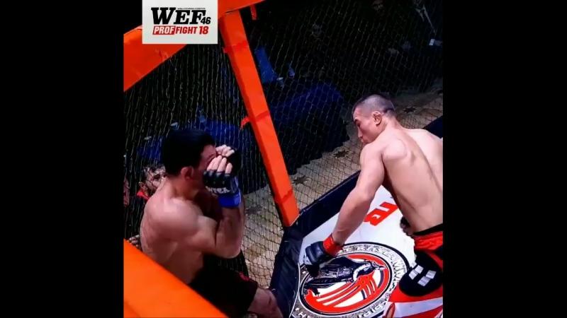WEF PROF FIGHT 18